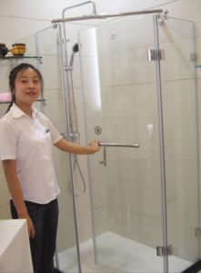 4mm Tempered Frosted Bathrrom/Shower Glass for The Bathrrom pictures & photos