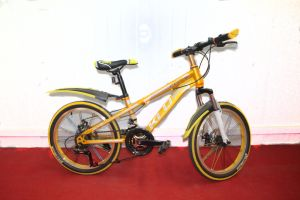 "Factory Direct Sell 20"", 24"", 26"" Mountain Bike (MTB-045) pictures & photos"
