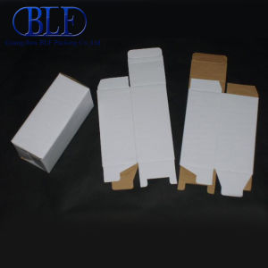 Paper Fordable Box Wholesale pictures & photos