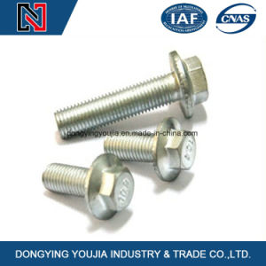 China Made Stainless Steel Hexagon Head Flange Bolt pictures & photos