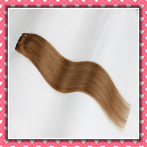 Brazilian Hair Extensions Clip-in Hair Silky 22inches pictures & photos