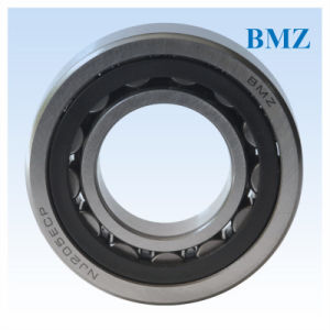 Cylindrical Roller Bearings (N, NJ, NU, NUP 200 series) pictures & photos