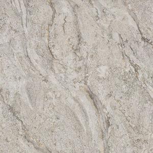 Digital Glazed Copy -Marble Floor Tile (8D61006) pictures & photos