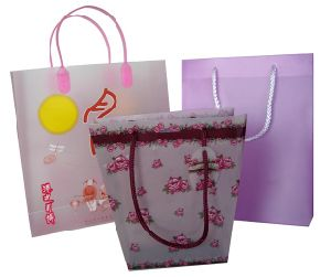 PP Shopping Bag (PP-04) pictures & photos