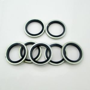 Hydraulic Bonded Sealing Washers or Spiral Wound Seal Gasket. pictures & photos