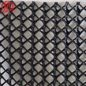 3D Geonet for Drainage/ Three-Dimensional Drainage Net pictures & photos