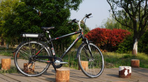 250W 36V Cool Man Electric Bicycle for European pictures & photos