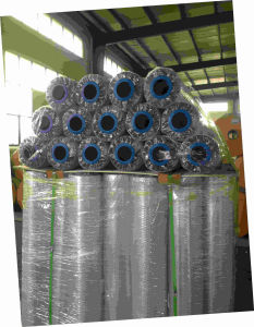 CPP Metallized PP Polypropylene Co-Extruding Film pictures & photos