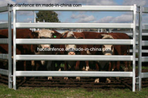 Super Heavy Duty Cattle Panel 6 Bars 115X42mm Oval Tubes Cow Gates Livestock Horse Gates pictures & photos