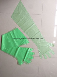 Disposable Long Sleeves PE Veterinary Gloves pictures & photos
