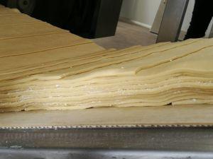 Sheet Cutting Lamonator pictures & photos