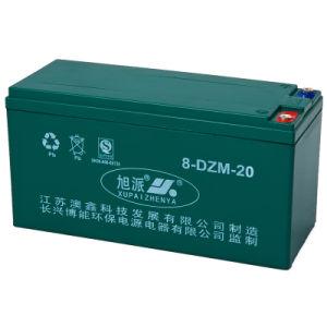 Lead Acid Battery (6-DZM-20)