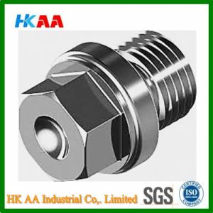 Hexagon Head Flanged Parallel Pipe Plugs (Stainless Steel A2 DIN910M) pictures & photos