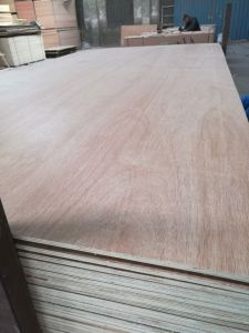 16mm Bed Slat Plywood Poplar Core E1 Glue pictures & photos