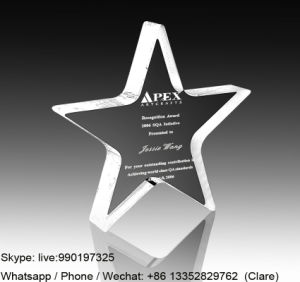 Cheap Acrylic Souvenir Trohpy Award Crafts with Customized Logo pictures & photos
