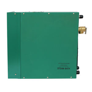 Auto Draining 4kw to 12kw Portable Steam Generator pictures & photos
