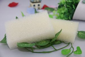 Kitchen Cleaning Filter Sponge pictures & photos