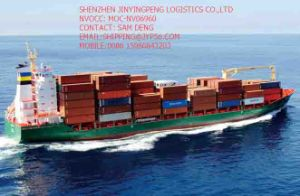 Open Top Container Shipping Logistics From China to Portugal/Spain/Germany/Mexico