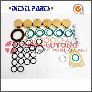 Repair Kits for Ve Pumps-Diesel Pump Rebuild Kits pictures & photos