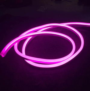New Item Mini LED Neon Flex (WD220-MF2W-2835-120L-NFL) pictures & photos