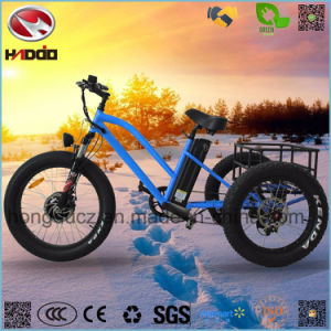 48V 500W Fat Tire Cargo Electric Tricycle for Sale pictures & photos