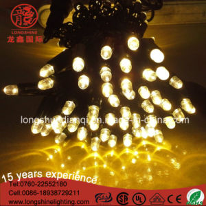 Warm White IP68 LED String Light Wedding Decoration for Outdoor pictures & photos