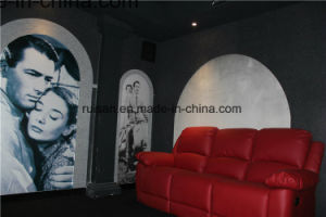 Pet Acoustic Panel for Cinema Wall pictures & photos