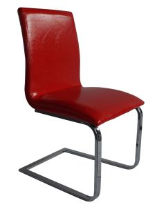 Nice Srongly Colored Dining Chair