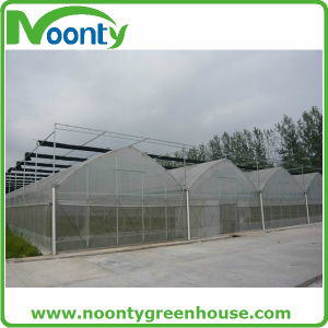 2016 High Quality Multi Span Agricultural Film Greenhouse for Sale pictures & photos