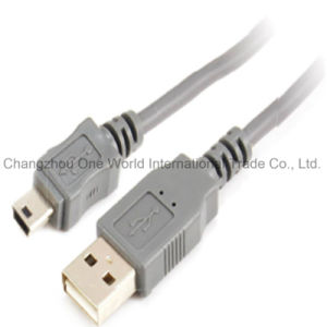 USB 2.0 a Male-Mini USB 5p Cable pictures & photos