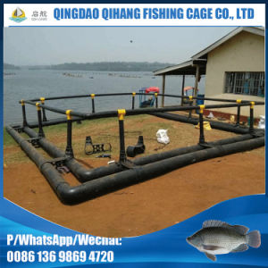 6m Square Fish Farming Cage for Kenya Pisciculture pictures & photos