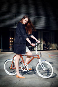 250W Retro Electric Bicycle with 36V/4.8ah pictures & photos
