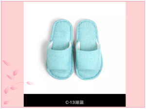 Differert Colors for Sunmmer Indoor Nice Slipper Form Factory pictures & photos