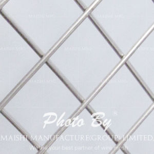 Metal Wire Welded Wire Mesh pictures & photos