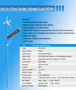 60W Solar Wind Clean Energy off Grid Easy Install Garden Lighting System