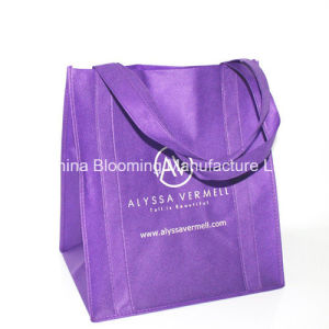 Cheap Recycle Printing Shopping Packaging Recycled Non Woven Eco Bag pictures & photos