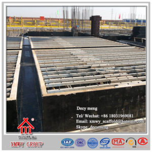 Factory Price Construction Formwork System/Slab Panel pictures & photos