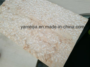 10mm Marble Stone and 15mm Honeycomb Panel Composite Panels pictures & photos