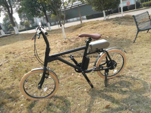 250W Electric Mountain Bike with 36V/5.8ah pictures & photos