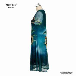 Miss You Ailinna 802024 Women Short Mesh Floral Dress pictures & photos