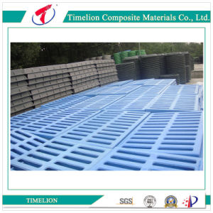 Professional Customized Cast Iron Floor Trench Drain Grates pictures & photos