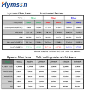 CNC Fiber Laser Cutter for Metal Sheet S. S. C. S. Brass/Copper Aluminum pictures & photos