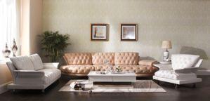 Design Living Room Luxury Top Grain Nubuck Leather Sofa pictures & photos