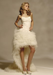 Fashion Style tulle Bridal Wedding Dress (N011)