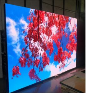 Outdoor/Indoor Rental Leddisplay Screen for Advertising (500*500mm/500*1000mm) Panel pictures & photos