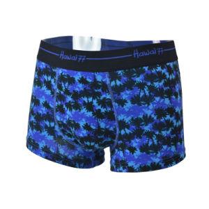 Men′s Boxer Cotton/Spandex, Nylon Elastic, Underwear