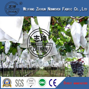 Spunbonded 100% PP and UV Agriculure Non Woven Fabric
