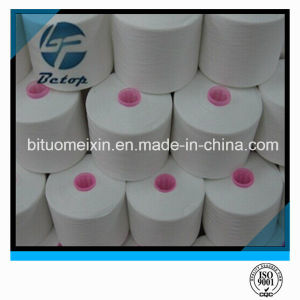 100% Polyester Spun Ring Yarn pictures & photos