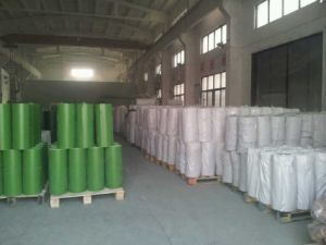 0.1mm PVC Film for Christmas Tree PVC Film pictures & photos