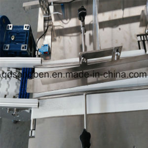 Packaging Machine with Auto Tidying and Feeder pictures & photos